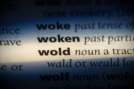 wold word in a dictionary. wold concept, definition.