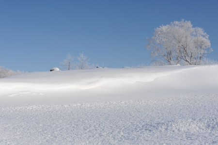 White winter landscape in Hokkaido, Japan photo