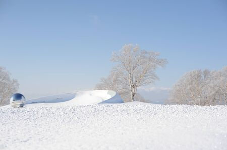 White winter landscape with a snow-covered tree photo