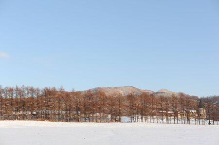 White winter snow landscape with a village photo