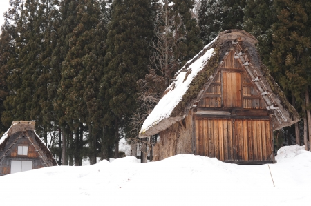 Thatched roof house covered in snow