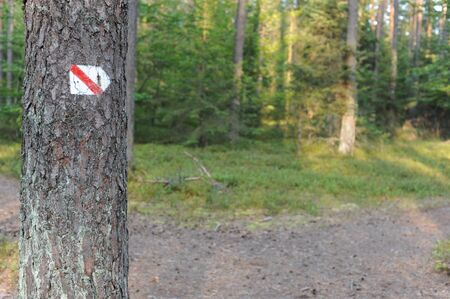 Walking trail marks and signs on trees showing direction for hikers in forest