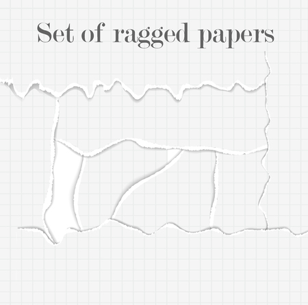 teared: Set of lacerated papers. Collection of torn pages. Ragged papers background