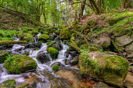 Mid-forest waterfall in the town of Olsztynek area, warmian-masurian province, Poland.