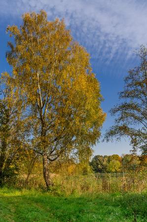 Raszyn ponds nature reserve, Warsaw, Mazovia voivodeship, Poland.