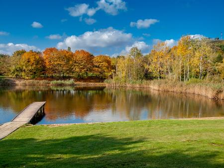 Pond in public park Szczesliwice in Warsaw, Poland. Zdjęcie Seryjne