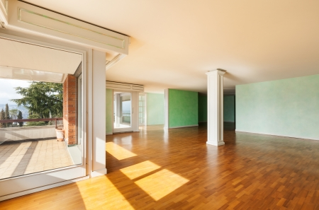 Inter, empty apartment in style classic, large room Stock Photo - 18913375