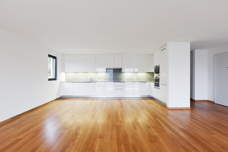 wood floor: interior modern empty flat, apartment nobody inside