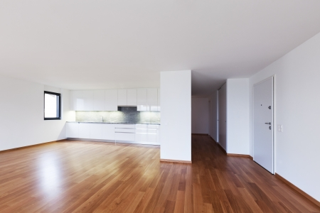 interior modern empty flat, apartment nobody inside Stock Photo - 19144982