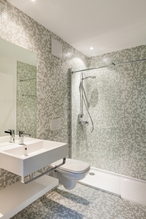 Interior new house, view modern bathroom Stock Photo - 22805798