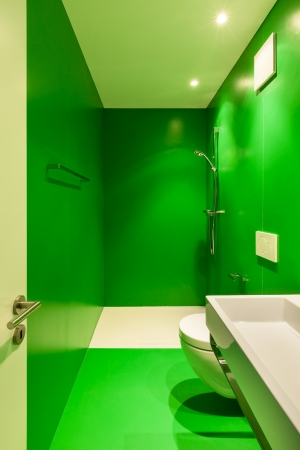 Interior of stylish modern house, green bathroom  Stock Photo - 22805874
