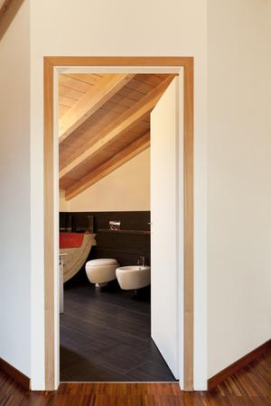 interior, new loft furnished, view of bathroom door open Stock Photo - 23448764