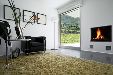 New interior design apartment, living room Stock Photo - 25105006
