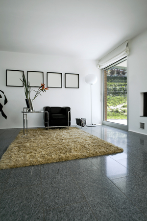 New interior design apartment, living room Stock Photo - 25105008