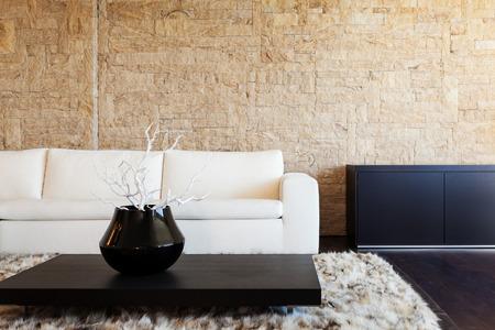 pokoj: Interiér luxusní byt, krásný obývací pokoj
