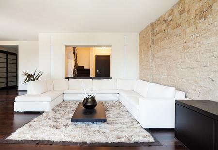 luxury apartment: interior luxury apartment, beautiful living room