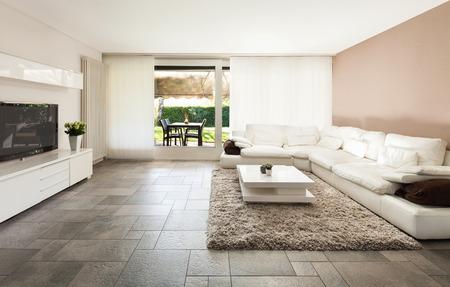 インテリア、美しいアパート, 豪華なリビング ルーム