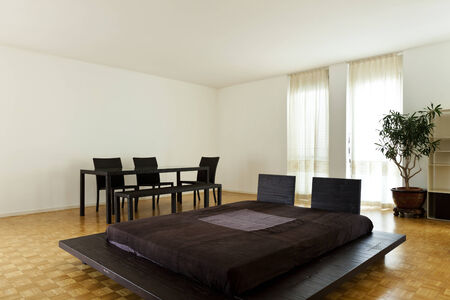 duplex: Bright duplex with hardwood floors, large room with double bed  Stock Photo