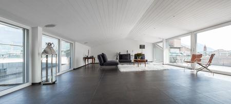 attic: Modern house, attic