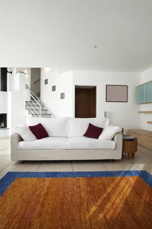 modern open space interior, carpet and sofa photo