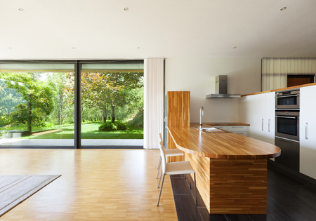 green house: interior of a modern house, domestic kitchen