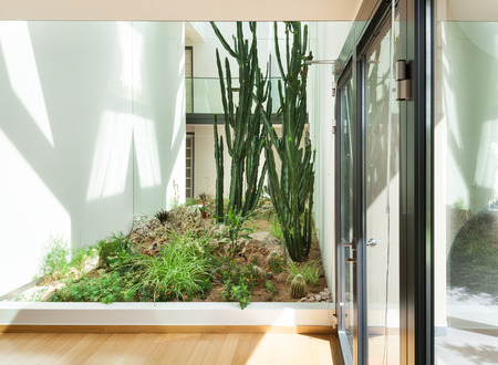 indoor plants: entrance of a modern building, interior