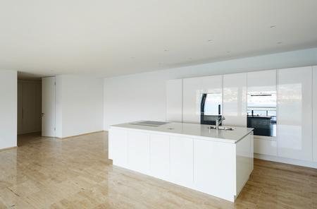 beautiful empty apartment, hardwood floor, modern kitchen photo
