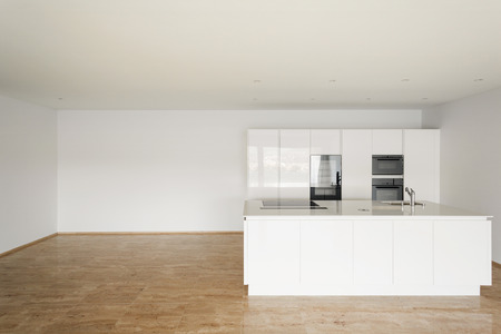nobody real: beautiful empty apartment, marble floor, modern kitchen