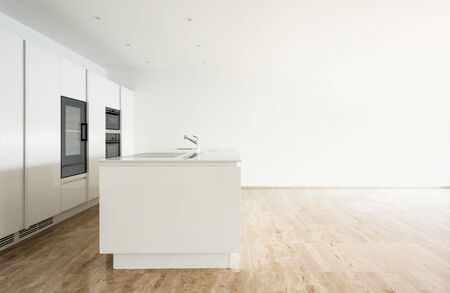 beautiful empty apartment with hardwood floor, modern kitchen photo