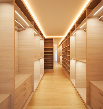 decore: Interior modern house, empty walk-in closet