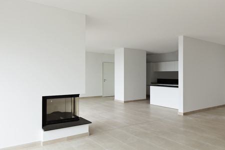 perspective room: new apartment, living room, view fireplace and kitchen