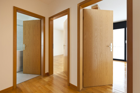 puertas de madera: hermoso apartamento, interior, puertas de madera abiertas