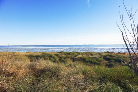 estuary: View of the estuary of po Stock Photo