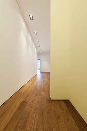 modern house with hardwood floor,room photo