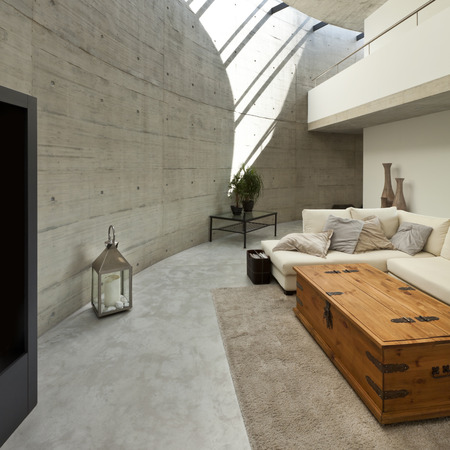house plant: beautiful modern house in cement, interior, living room