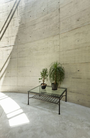 housing styles: beautiful modern house in cement, interior, detail large room