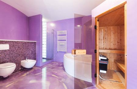interior, new house, comfortable bathroom with sauna photo