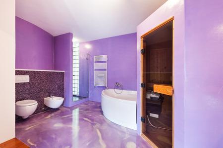 comfortable: interior, new house, comfortable bathroom with sauna Stock Photo