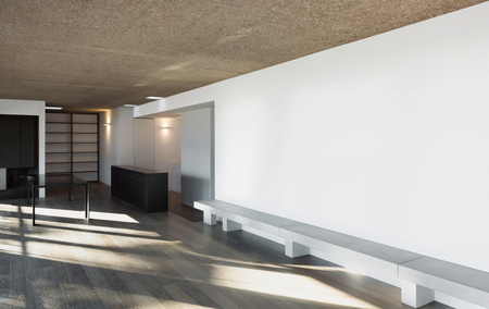 wide open spaces: Architecture, modern apartment, empty room, parquet floor