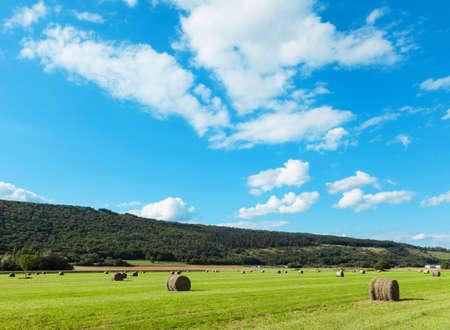 blue green landscape: landscape, green field and clouds on blue sky