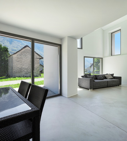 house windows: architecture, interior modern house, wide living room