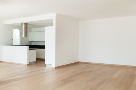 built: Interior, domestic kitchen of a modern apartment, view from the living Stock Photo