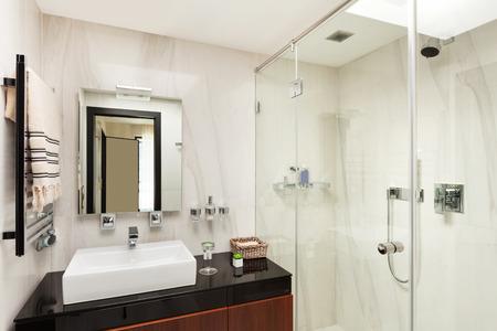 モダンな家の美しいポリマー、浴室