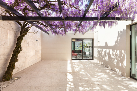 modern house beautiful veranda with wisteria Stok Fotoğraf - 44078348