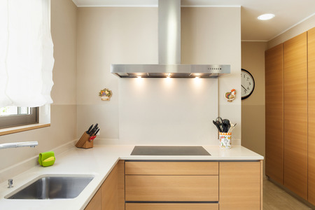 Interior of a modern apartment furnished, wide domestic kitchen Imagens - 44078351