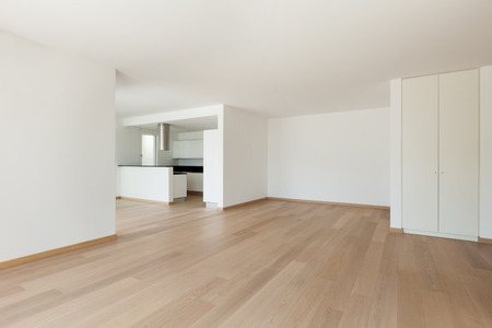 wood ceiling: Interior, domestic kitchen of a modern apartment, view from the living Stock Photo