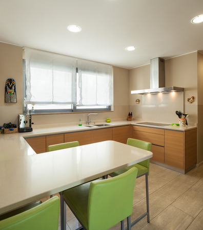 white kitchen: Interior of a modern apartment furnished, wide domestic kitchen