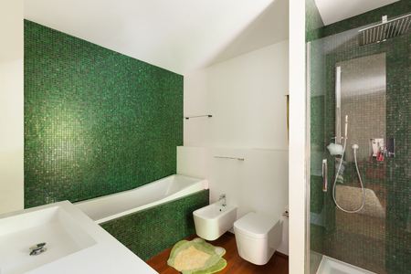 bathroom: Interior, modern apartment, bathroom with shower