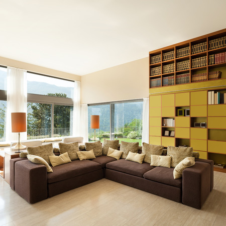 comfortable: Interior of a modern living room, comfortable divan