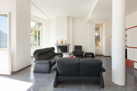 apartment living: Architecture, classic apartment furnished, comfortable living room